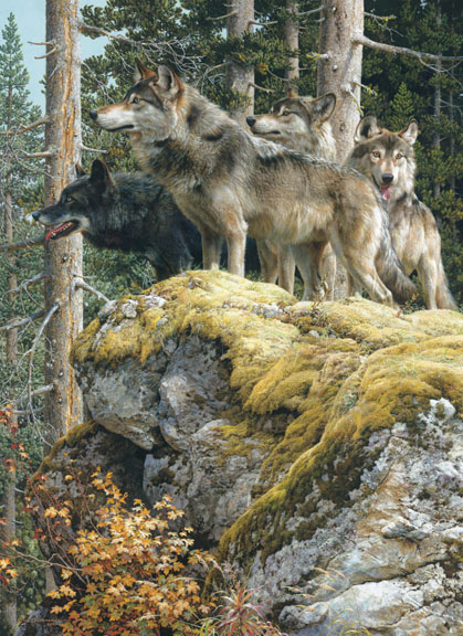 Lookout Tower – Wolves by Carl Brenders