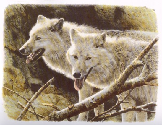 White Wolves by Carl Brenders