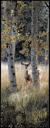 Autumn Gold-Mule Deer