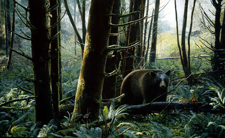 Black Bear by Terry Isaac