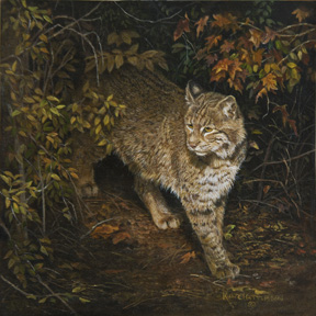 Bobcat Autumn by Karla Mann