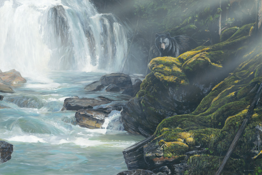 By the Falls – Bear by Terry Isaac