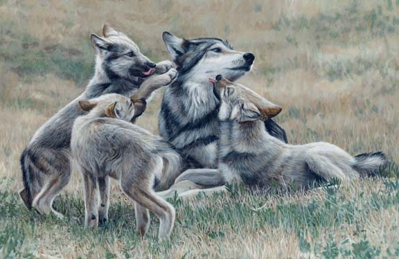 Center of Attention by Terry Isaac