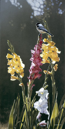 Chickadee and Gladiolas