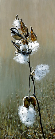 Chickadee and Milk Weeds  by Terry Isaac