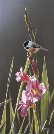 Chickadee and Pink Gladiolas by Terry Isaac