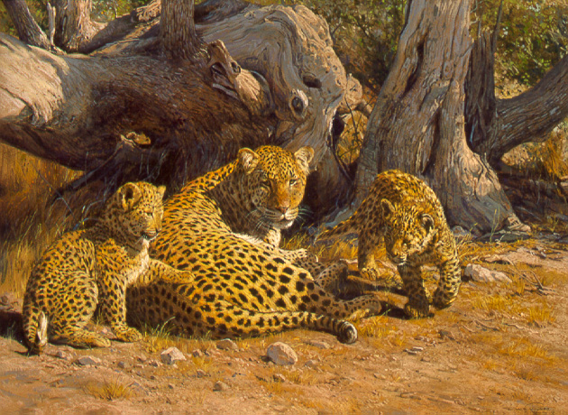 Contented Mother – Leopard by Dino Paravano