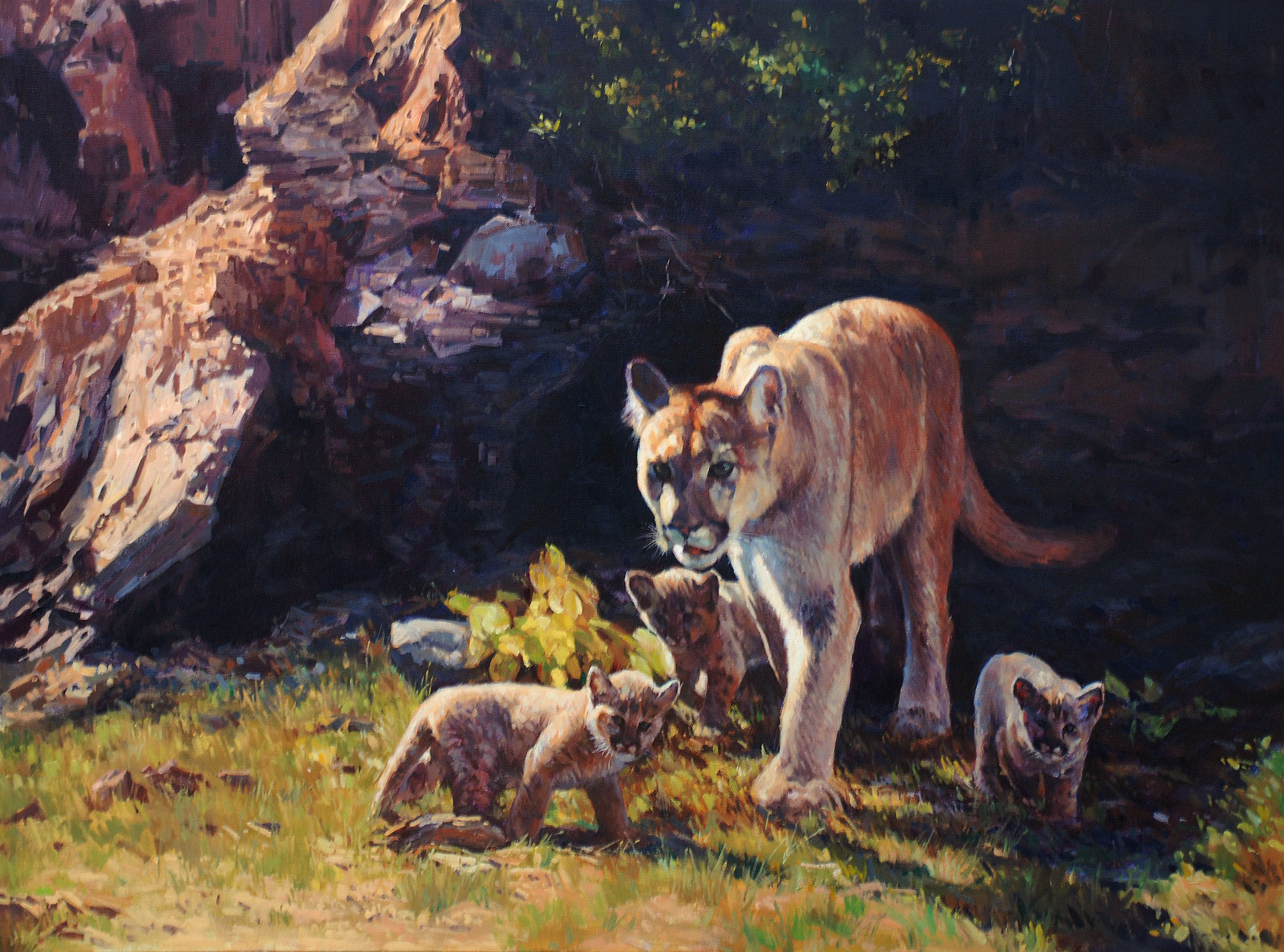Cougar and Cubs by Dino Paravano