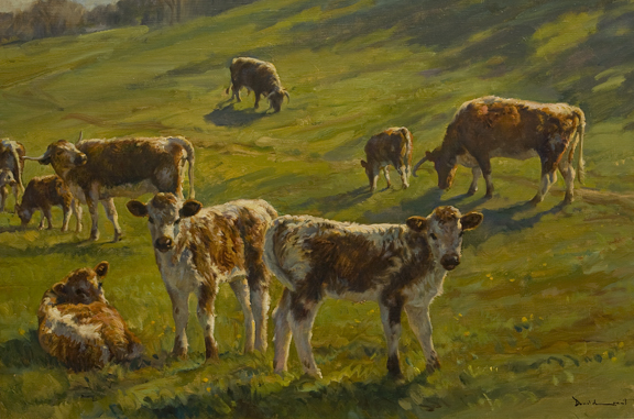 Cows by Donald Grant