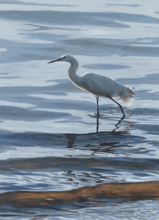 Egret by Terry Isaac