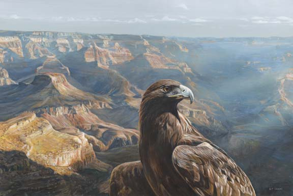 Golden Majesty – Eagle by Terry Isaac