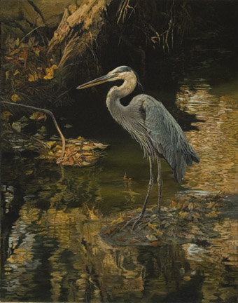 Great Blue Heron by Karla Mann
