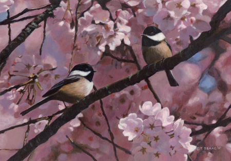 In The Blossoms by Terry Isaac