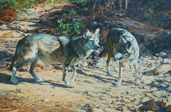 Mexican Wolves by Dino Paravano