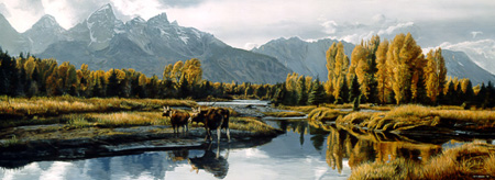 Moose Landscape by Terry Isaac