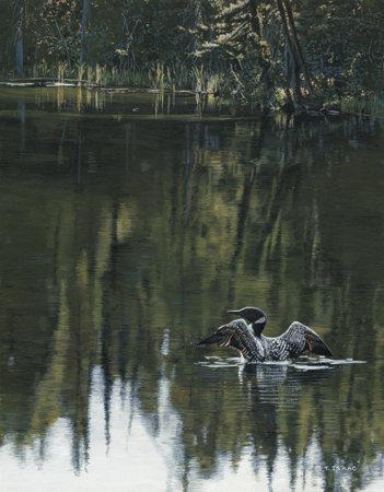 Morning Reflections by Terry Isaac