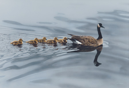 Mother Goose by Terry Isaac