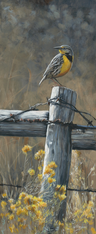On the Fence by Terry Isaac