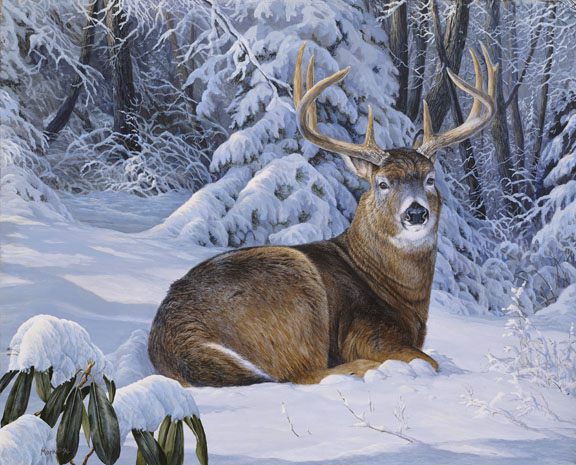 Orion's Dream – Deer by Laura Mark-Finberg