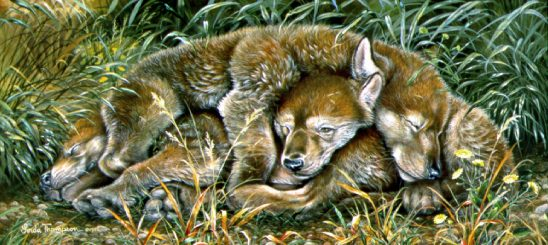 Pile of Pups by Linda Thompson