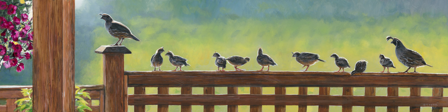 Quail Crossing by Terry Isaac