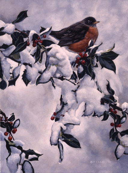 Robin with Holly by Terry Isaac