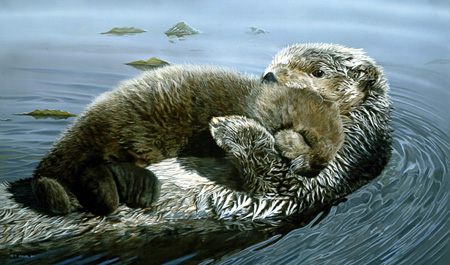 Rock-A-Bye – Sea Otter by Terry Isaac