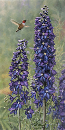 Rufus and Delphiniums by Terry Isaac