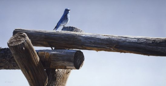 Rustic Blue by Terry Isaac