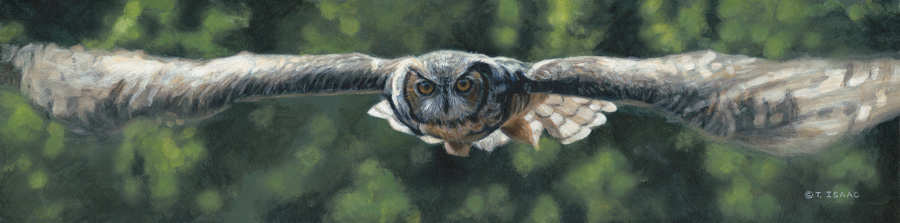 Silent Flight by Terry Isaac