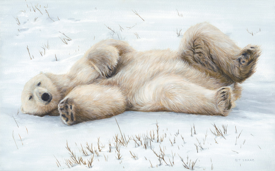 Snow Angel by Terry Isaac