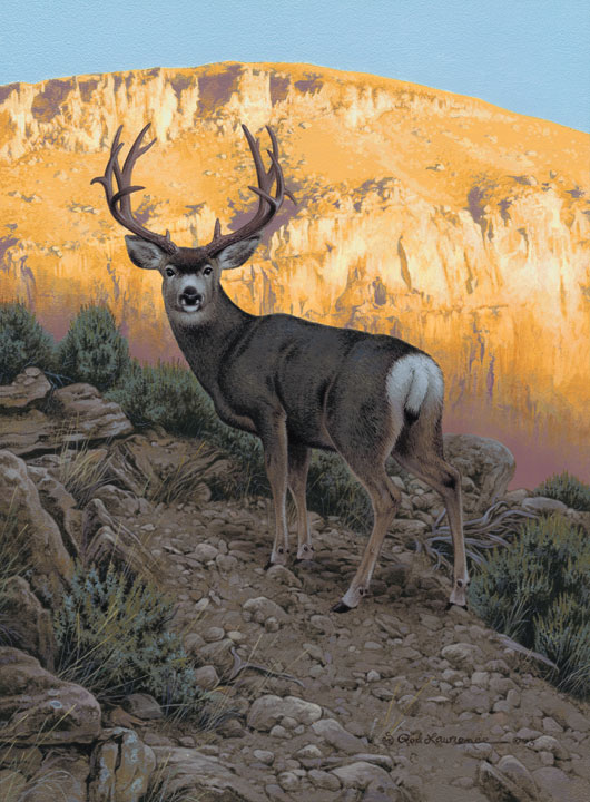 Sunrise Mulie by Rod Lawrence