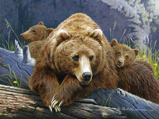 The Three Bears by Rod Lawrence