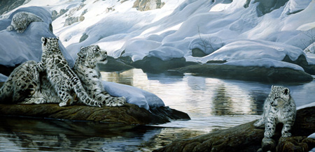 Watchful Eye – Snow Leopards by Terry Isaac