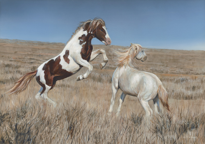 Western Spirits by Terry Isaac
