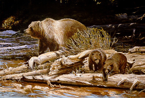 Wildlife – Bear with Cubs by Alan Sakhavarz