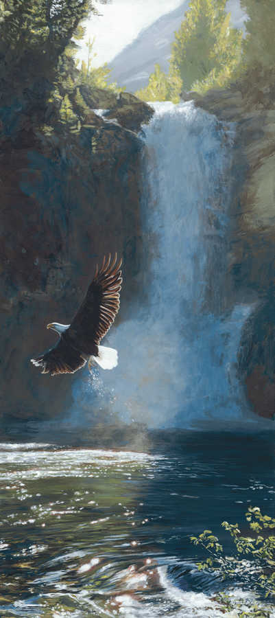 Wings Over Water – Eagle by Terry Isaac