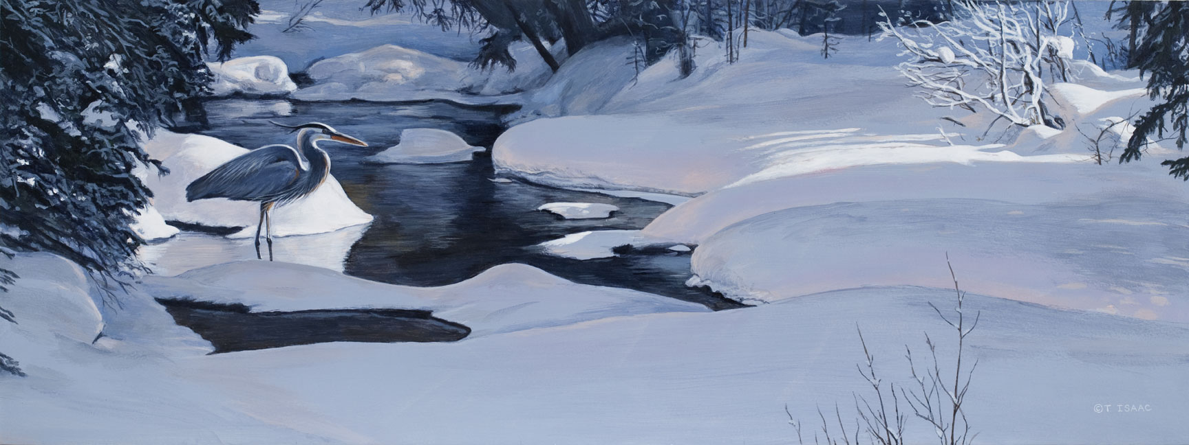 Winter Solitude by Terry Isaac