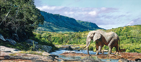 Monarch of Mwaluganje by Guy Combes