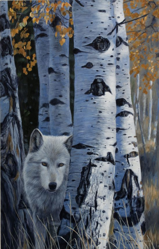 Watchful by Terry Isaac