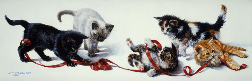 Bureaucats by Amy Brackenbury