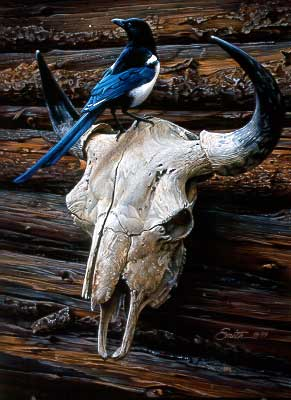 Magpie and Skull by Daniel Smith