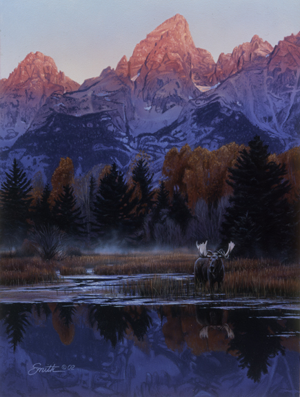 Teton Dawn – Moose by Daniel Smith