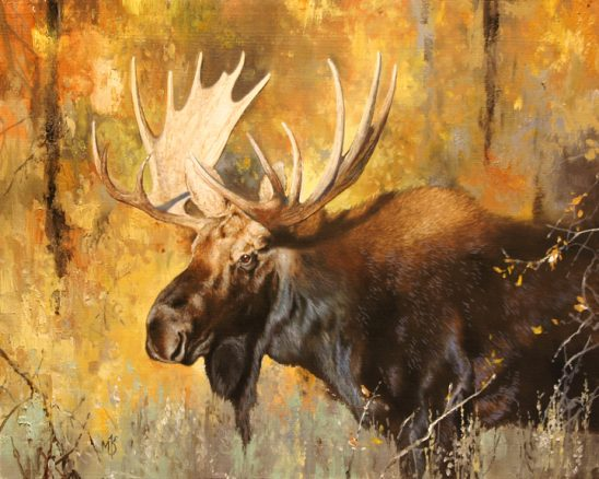 Autumn Moose by Mark Kelso