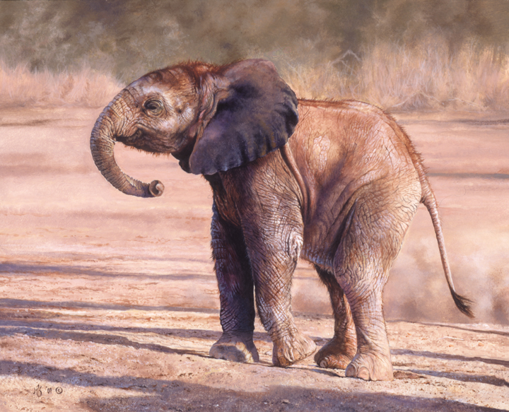 Little Lady – African Elephant by Mark Kelso