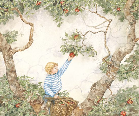 Apple Picking by Catherine Simpson