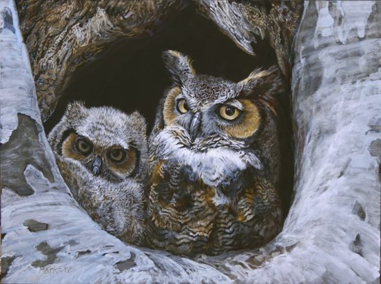 Great Horned Owl – Mom and Baby by Laura Mark-Finberg