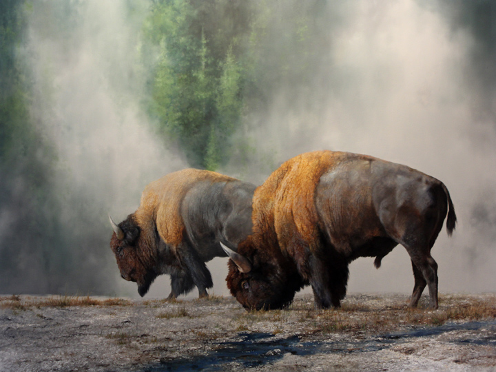 The Boys of Yellowstone by Mark Kelso