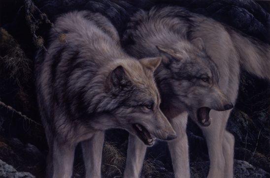Opus – Wolves by Laura Mark Finberg