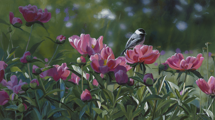 Peonies Aglow by Terry Isaac